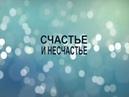 Счастье и несчастье . Фрагменты из курса Александра Блинкова. ( архивное видео )
