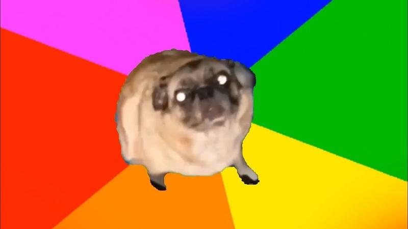 Fuc it pug vibin to sh boom