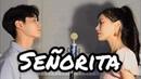 Señorita - Shawn Mendes, Camila Cabello COVER (NIDA X FEB)
