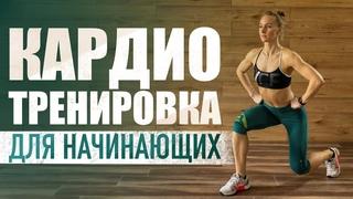 Кардио тренировка для начинающих   Упражнения для похудения и сжигания жира в домашних условиях