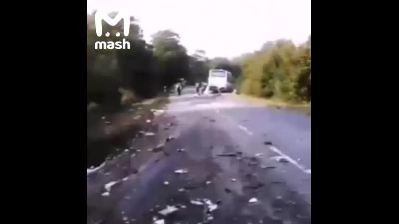 В Калининградской области в ДТП с автобусом погибли шесть человек среди них один ребенок