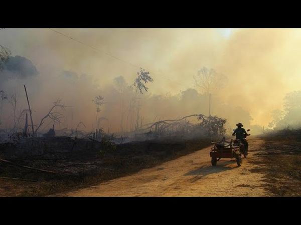 Сезон пожаров в Амазонии рекордное число очагов возгорания…
