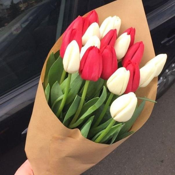 киану фото букетов с тюльпанами дома основе проекта пассажирского