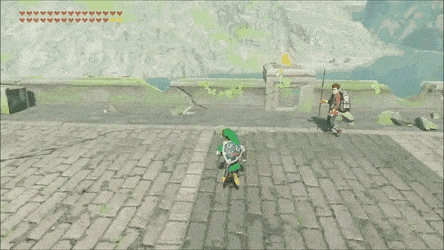 Well...he did warn you Link. [BOTW] - Create, Discover and Share GIFs on Gfycat