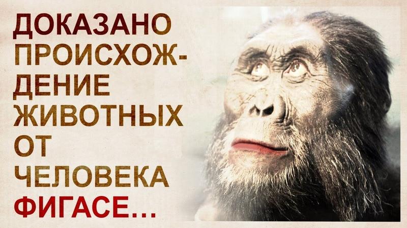 Теория инволюции Александра Белова Человечество деградирует