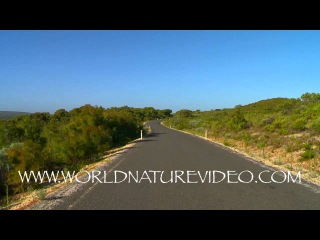 Virtuale Exercise DVD through stunning Landscapes