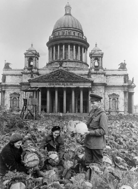 О памятниках, изображение №2