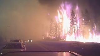Внутри лесного пожара... Удивительные и пугающие кадры!