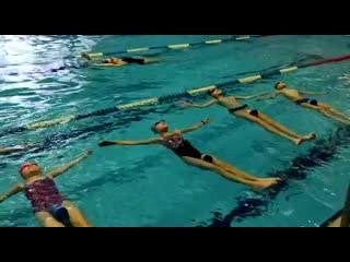 Клубный урок «Морские котики» в Большом бассейне для для детей 8-12 лет