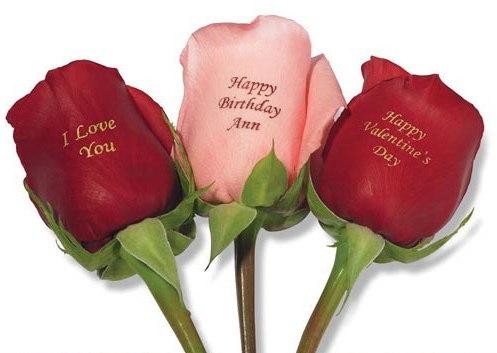 этой розы с поздравлениями на лепестках возможно, что