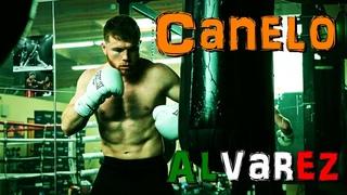 Canelo Alvarez Boxing Training Motivation HD