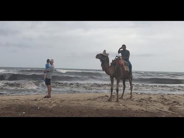 Отдых в Тунисе Отель HAWAI BEACH CLUB три звезды обзор отеля