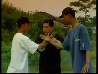 1. 太極推手傅清泉 Taichi Push Hands Fu Qingquan