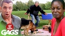 Best of Pranks at The Park Vol. 6 | Just For Laughs Compilation