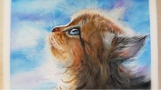 🐈Пушистый КОТЕНОК АКВАРЕЛЬЮ / Fluffy KITTEN in watercolor / 솜털 고양이 수채화🐈