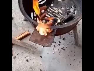 Дикий кулинар