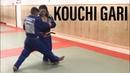 Kouchi gari