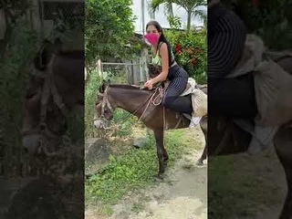 Riding for the first time  ponyboy