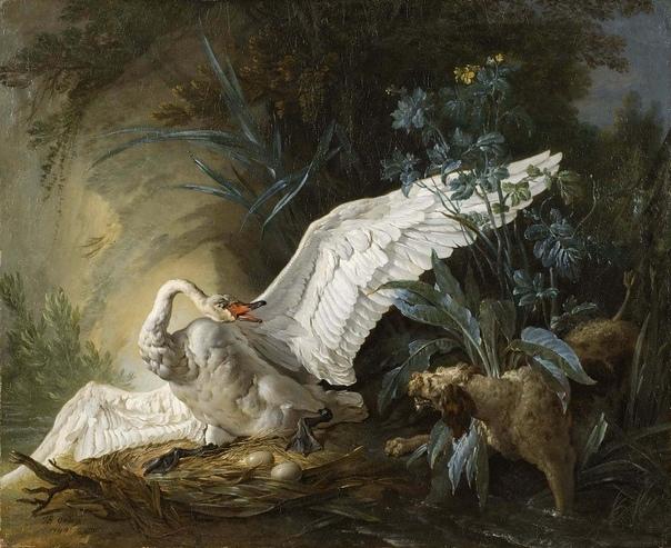 «Водяной спаниель удивляет лебедя на гнезде», Жан-Батист Одри (Удри)