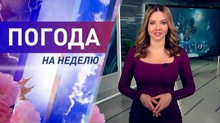Погода на неделю 8 – 14 марта 2021. Прогноз погоды. Беларусь | Метеогид