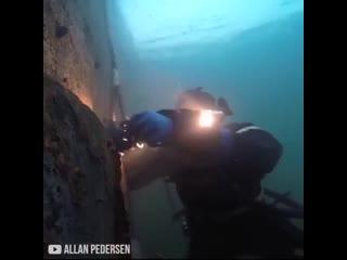 Подводный сварщик  Интересные нюансы и трудности сварки под водой gjldjlysq cdfhobr  bynthtcyst  b nhelyjcnb cdfhrb gjl dj