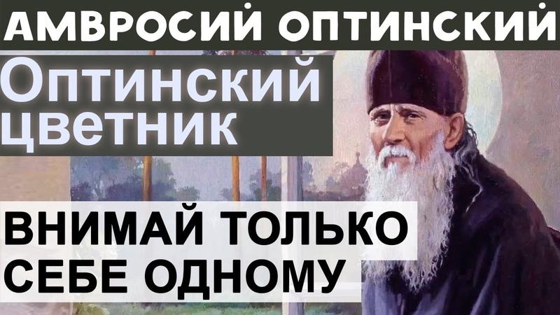 Внимай только себе одному Остальных предоставь Промыслу Амвросий Оптинский