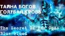 Тайна Богов. Голубая кровь. Невероятно, но факт. Выпуск №7