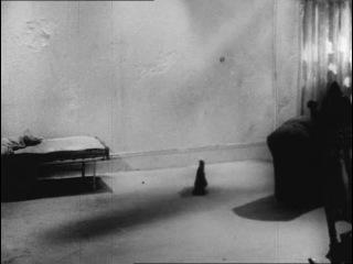 Фильм Film 1965 Алан Шнайдер по сценарию Сэмюэла Бекетта