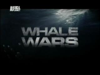 Китовые Войны 1 Сезон 6 серия из 7 Уступи дорогу дамам