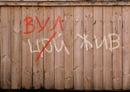 Персональный фотоальбом Ромы Грищука