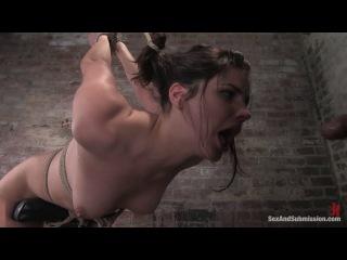 Bobbi starr bdsm, oral sex, all sex, anal sex, deep throating
