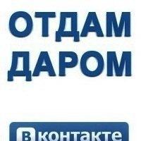 Борисов барахолка | услуги | отдам даром