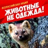 Антимеховая акция 2014. Саратов