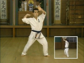 Все ката (киокушинкай карате kyokushin karate)