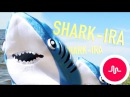 SHARK-ira [OFFICIAL VIDEO] @RecapturedMusic