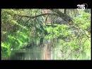 Винсент. Нерассказанная история нашего дяди. Биография Винсента Ван Гога (2012) Pt 1. 2012DVB