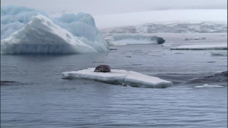 Замерзшая планета 2011 на краю земли