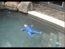 Испытания спецкостюма на ребёнке 7 мес - Floating infant swimming resource ISR 7 month old baby floatting