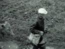 Karjalan evakuointi sota aikana