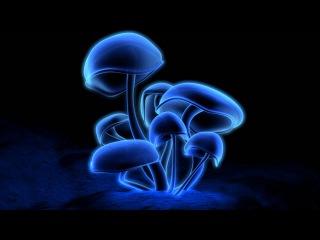 Junkie XL - Mushroom [HD]