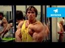 Best Bodybuilder of All Time Arnold Schwarzenegger's Blueprint Training Program