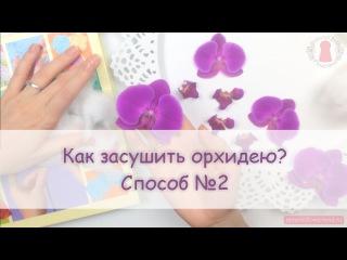 ЮВЕЛИРНАЯ СМОЛА || Как засушить орхидею? Watching Orchids Dry