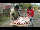 Особенности охоты и рыбалки в Якутии