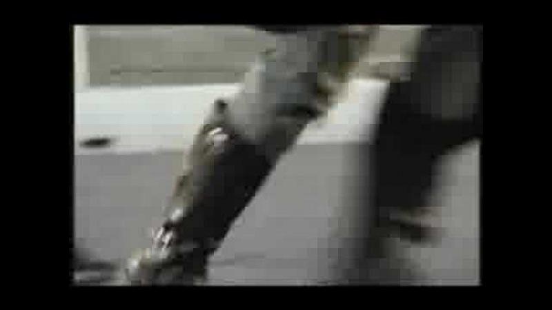 Lemmy Kilmister (Comercial)