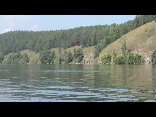 В водах уральского озера Тургояк замечен гигантский черный змей