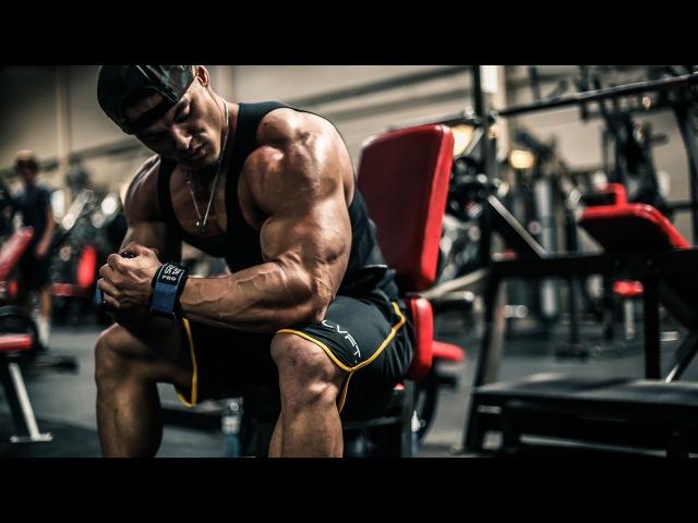 Bodybuilding Fitness Motivation - No Pain No Gain [Best Motivational Speech Ever !!]