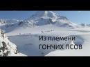 Из племени гончих псов HD Документальный фильм об уникальной гонке на собачьих упряжках