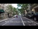 Runaway dog in New York City runs on FDR Drive (Highway)