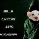 Константин Мышь фотография #39
