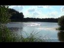 Река. Природа. Пение птиц. Звуки природы. Птицы поют. Релакс. Медитация. Место силы. Дзен.